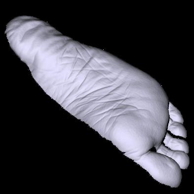 foot2